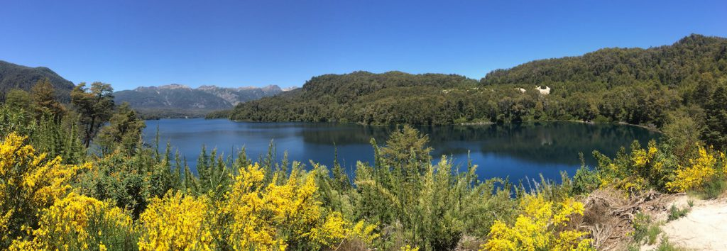 Panorama vom Lago Correntoso