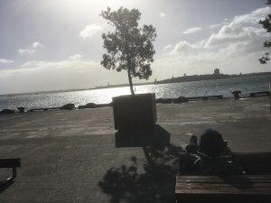 Entspannung am Hafen