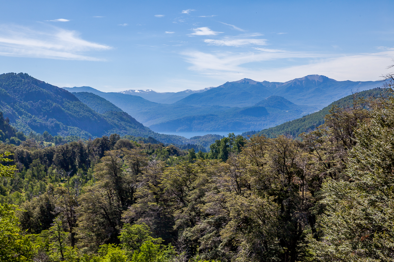 Argentinien - Patagonien - 7 Seen-Route (Ruta de los Siete Lagos) - Valle del arroyo Pil Pil