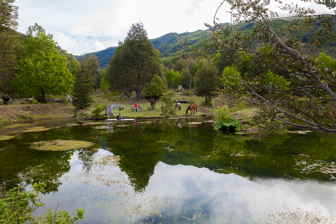 Chile - Rancho de Caballos - Palguin