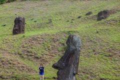 Rapa Nui - Moais beim Vullkan Rano Raraku