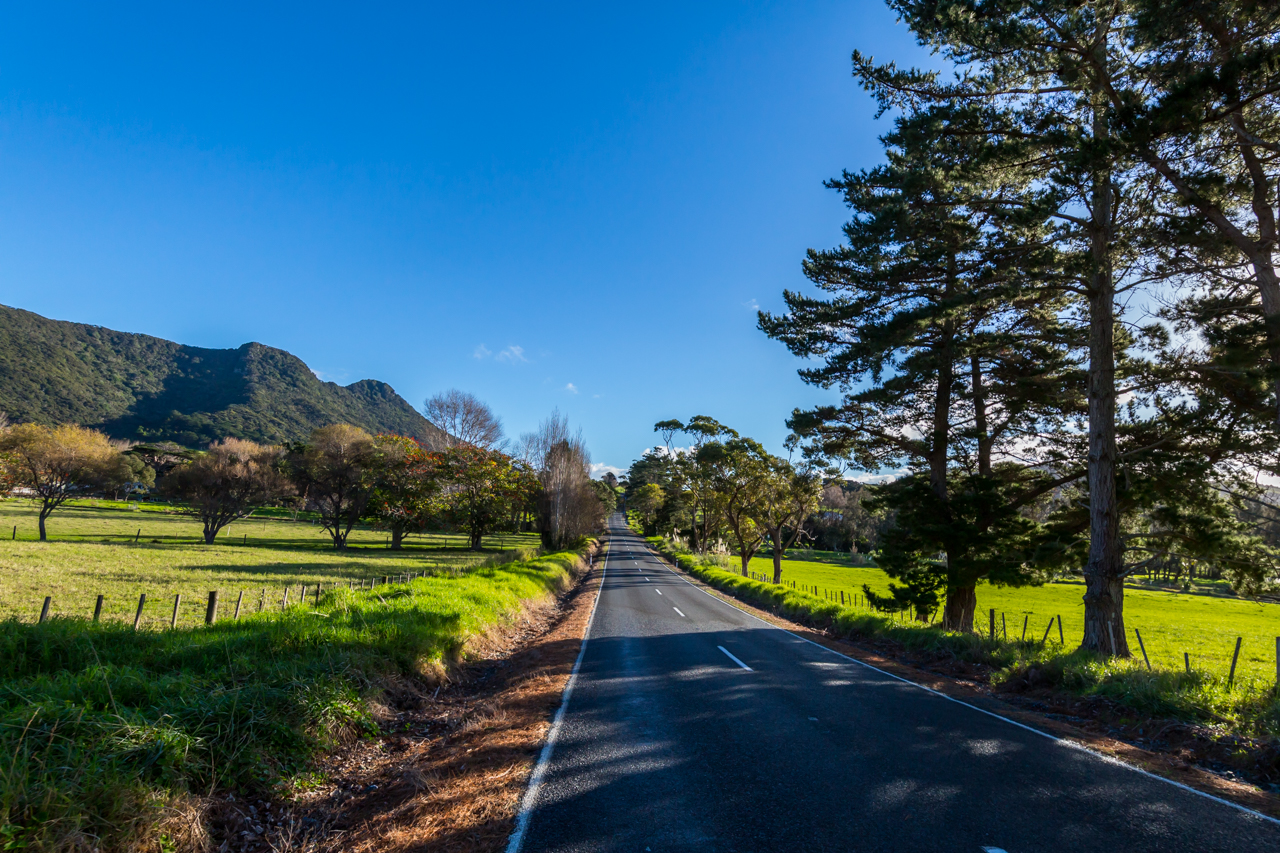 Neuseeland - Nordinsel - Ostküste - Twin Coast Highway