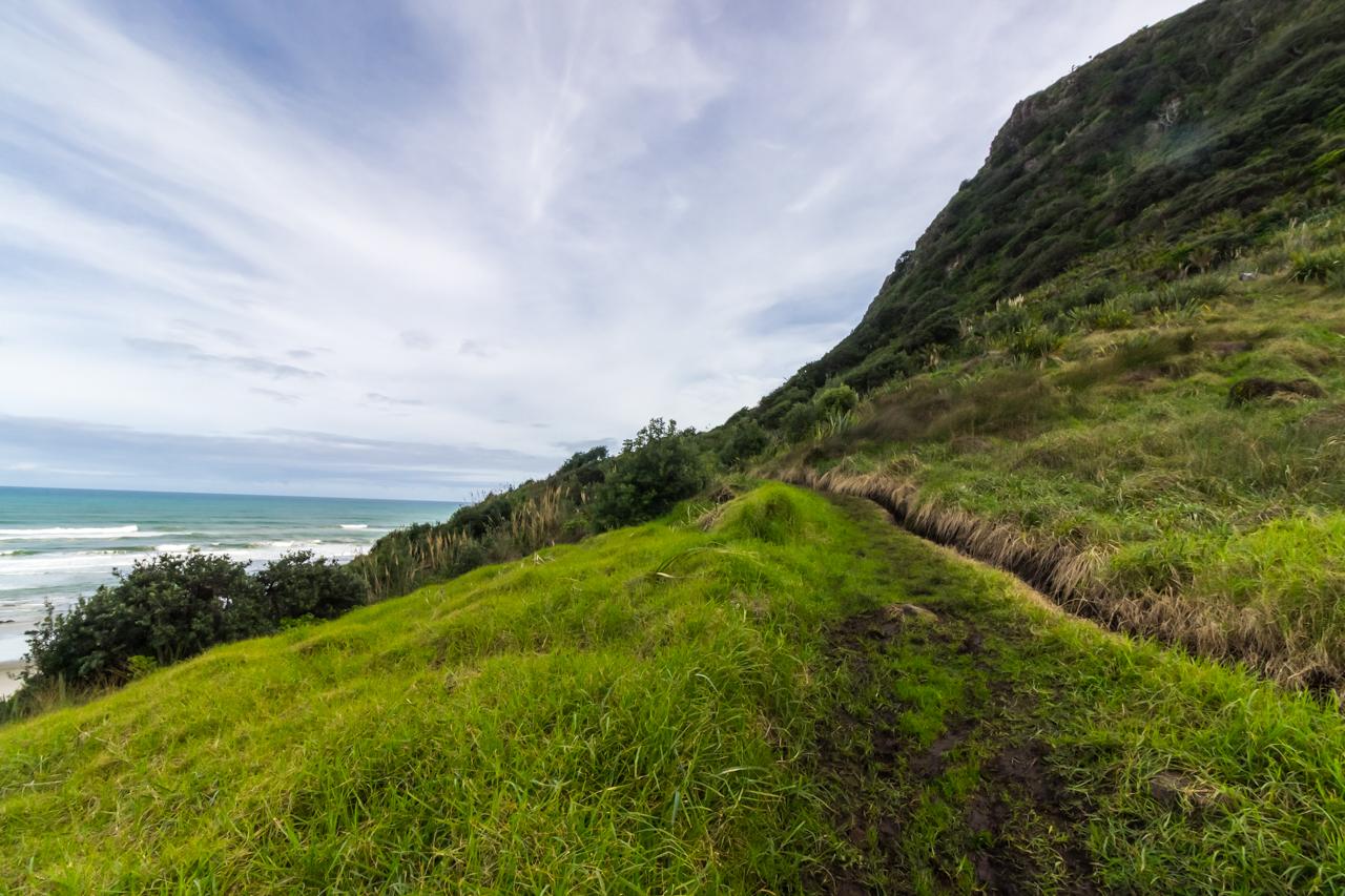 Neuseeland - Nordinsel - Westküste - Managanui Bluff