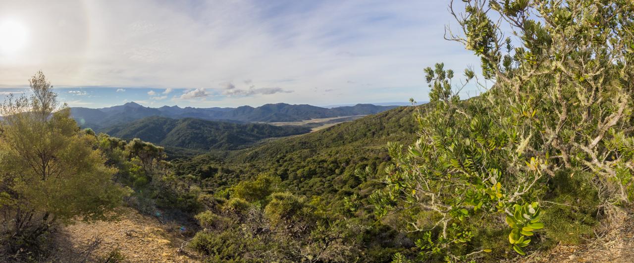 Neuseeland - Great Barrier Island - Te Ahumata