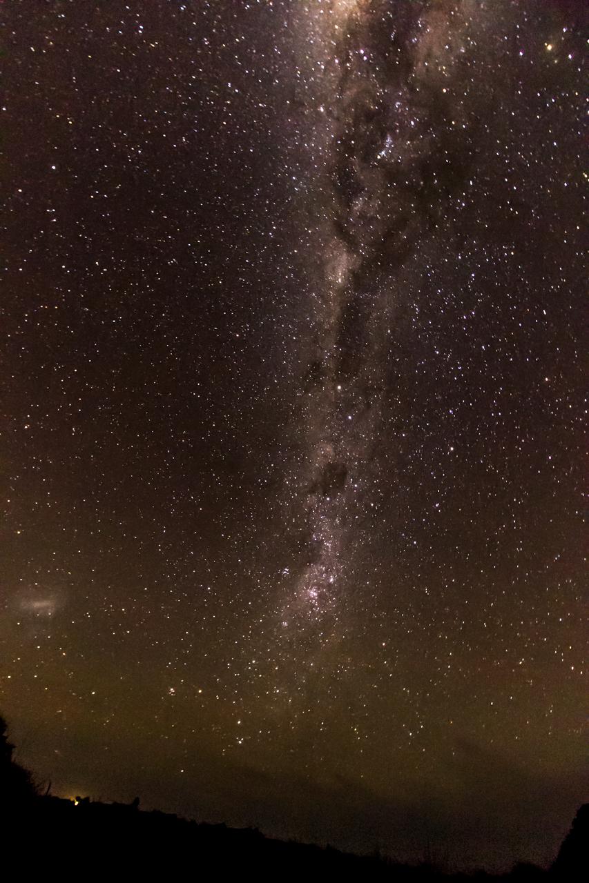 Neuseeland - Auckland Region - Waitakere Ranges - Whatipu Campsite
