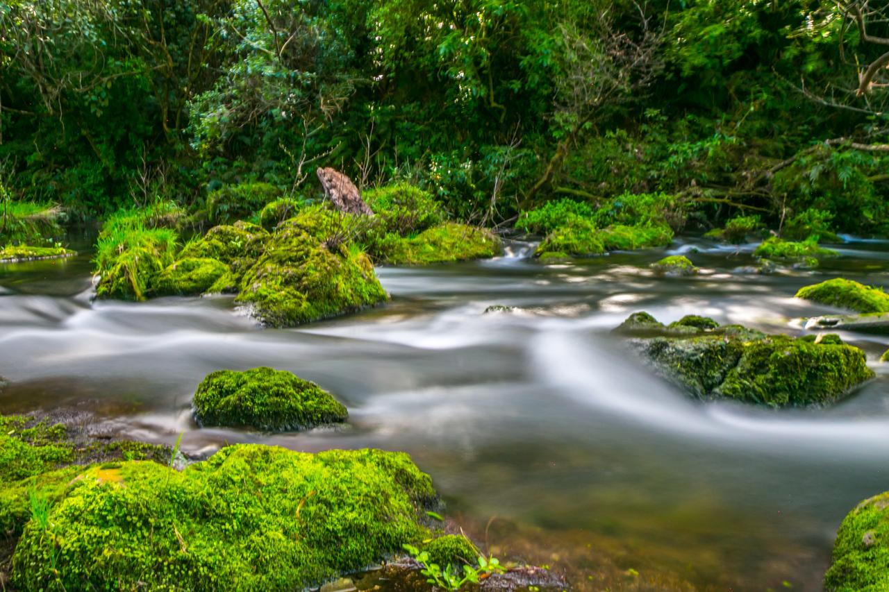 Neuseeland - Nordinsel - Ostküste - Maraetotara Falls