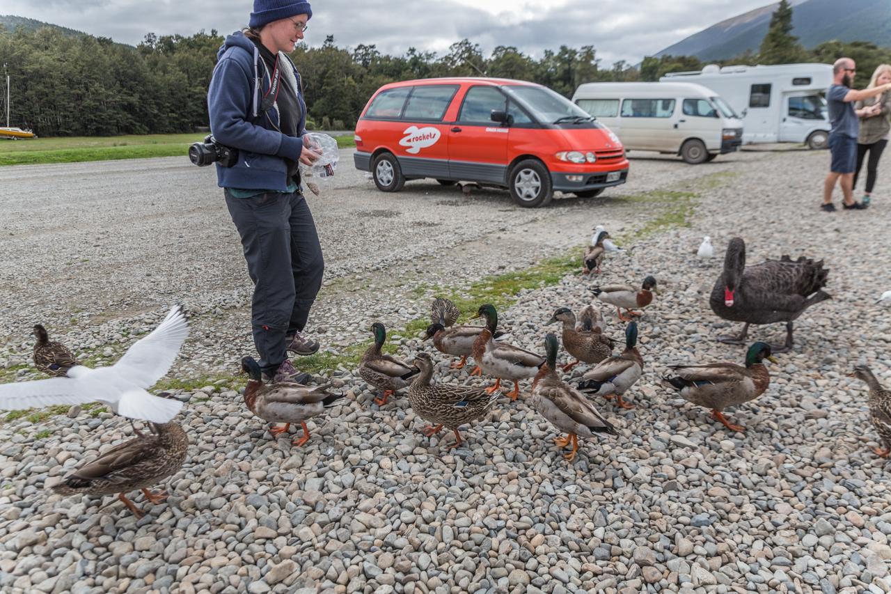 Neuseeland - Lake Rotoiti