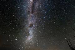 Neuseeland - Great Barrier Island - Der Nachthimmer über der Insel - am Horizont ist Auckland in 100km Entfernung