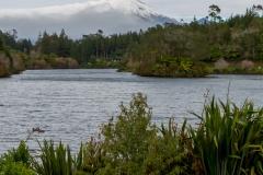 Neuseeland - Nordinsel - Blick auf den Mt Taranaki