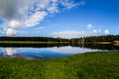 Neuseeland - Nordinsel - Dudding Lake