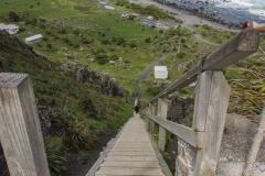 Neuseeland - Cape Palliser