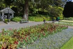 Neuseeland - Nordinsel - Wellington - Botanischer Garten