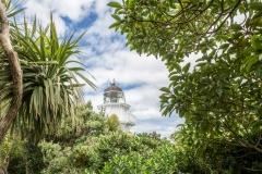 Neuseeland - Katiki point