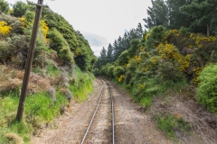 Neuseeland - Dunedin Railways - Taieri Gorge