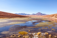Von El Tatio nach San Pedro de Atacama - Chile