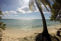 Schnorcheln auf der Jugendinsel - Cuba