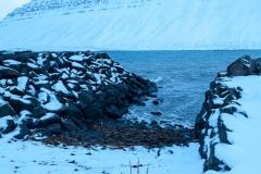 Rund um Ísafjörður - Island