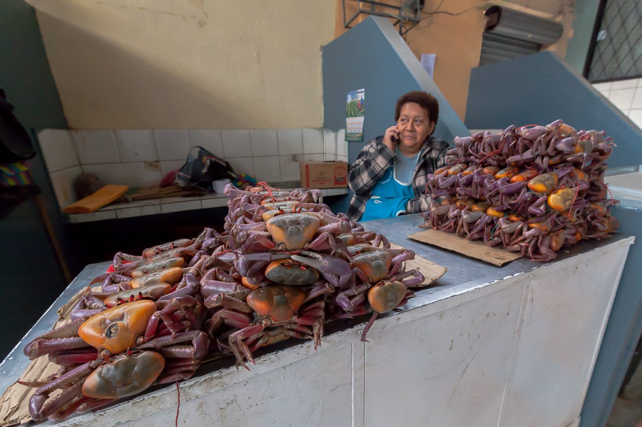 Riobamba - Mercado Merced
