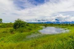 Ecuador - Tren de la Dulzura - die Andenausläufer kommen in Sichtweite
