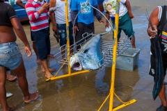 Puerto Lopez - der Fischmarkt unter freien Himmel
