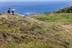 Der Rano Kau Vulkan - kurzzeitig hatten wir auch tierische Begleitung