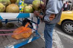 Riobamba - frische Cocos-Milch