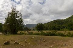 Es gibt auch einige Ebenen im Park.. teilweise auch mit Pferden.