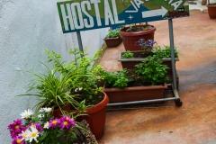 Der Eingangsbereich zum Hostel in Valdivia.