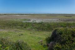 Nationalpark Chiloé - Dünen gibts hier auch schon