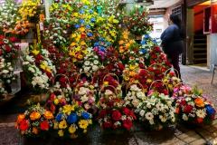 Der Blumenmarkt von Santiago de Chile