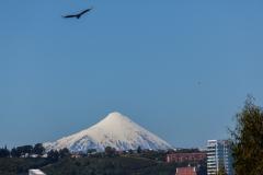 und etwas weiter weg ist noch der Vulkan Osorno