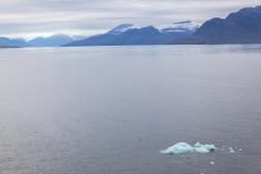 Ein paar Eisbrocken von einem der Gletscher