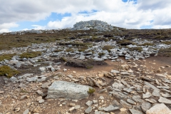 Falklandinseln - Rund um Stanley - karge Umgebung
