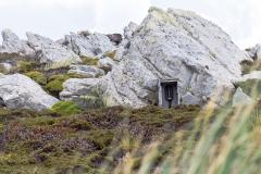 """Falklandinseln - Rund um Stanley - ein altes """"Notruf-Telefon"""" mitten im Nirgendwo"""
