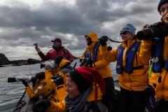 Cooper Bay - Foto von Menschen die Fotos von Pinguinen machen :-)