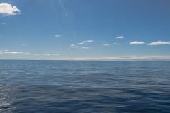 Ruhige See zwischen Südgeorgien und der Elefanteninsel