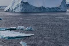 Eisberge umgeben das Schiff