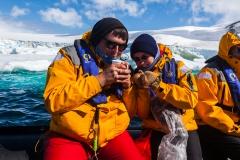 Brown Bluff: Eis schmelzen :-)