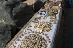 Für die Faulen: Muscheln vom Strand zum Kaufen.