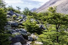 Torres del Paine: die letzten Meter nach oben
