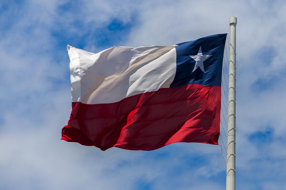 die chilenische Fahne