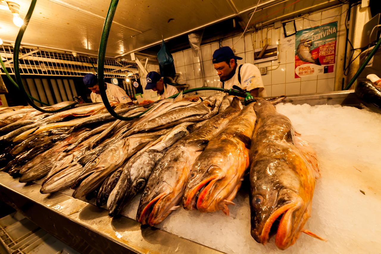 Chile - Stantiago - Fischmarkt