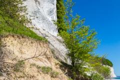 Rügen - Kreidefelsen vor dem Königsstuhl