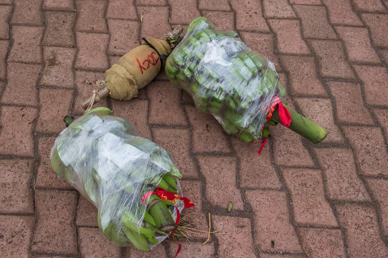 Vorbereitungen für ein Event des Tapati - es müssen wieder Bananen getragen werden - über der Schulter und dann links und rechts je eine