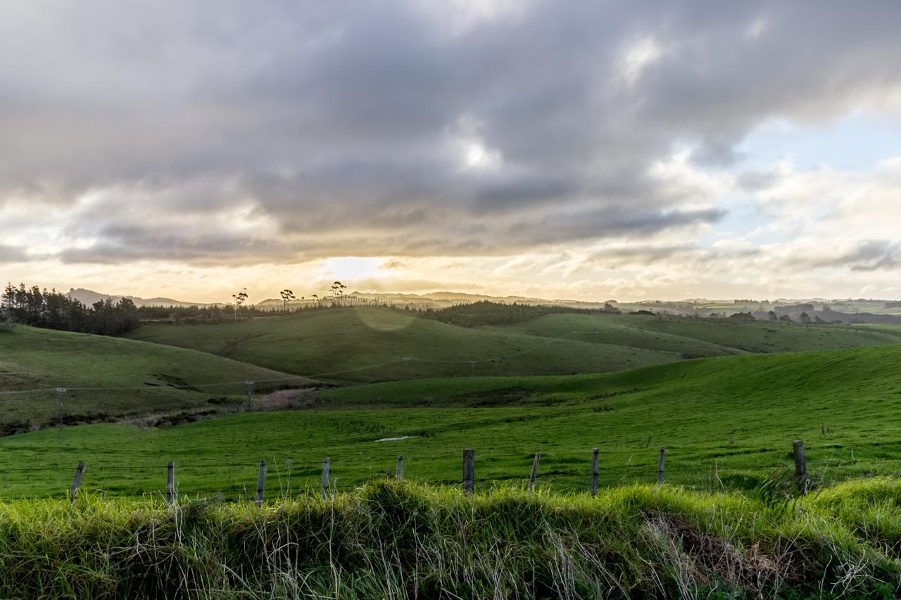Neuseeland - Nordinsel - Ostküste - Tapeka