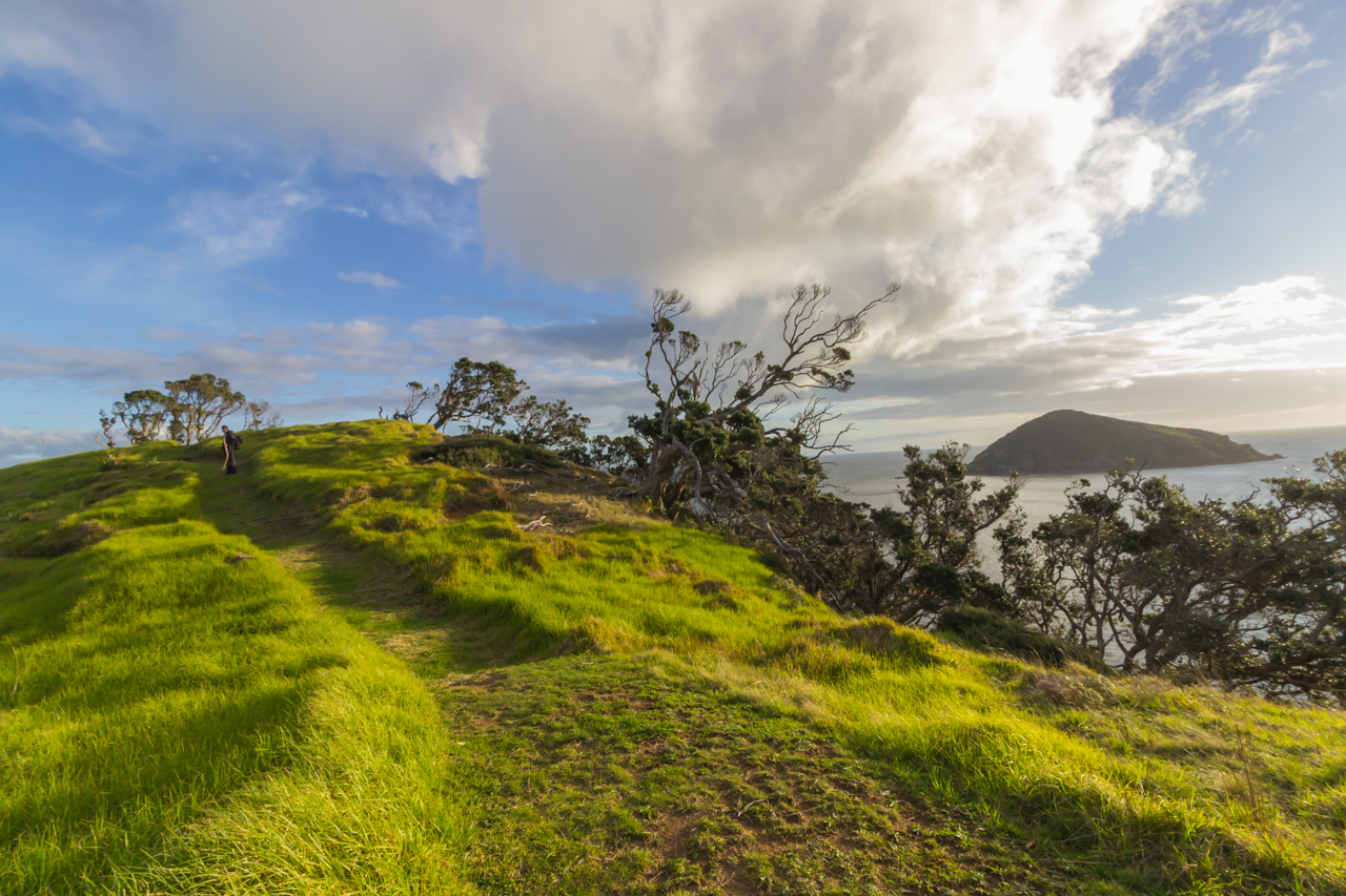 Neuseeland - Great Barrier Island - Whalers Lookout