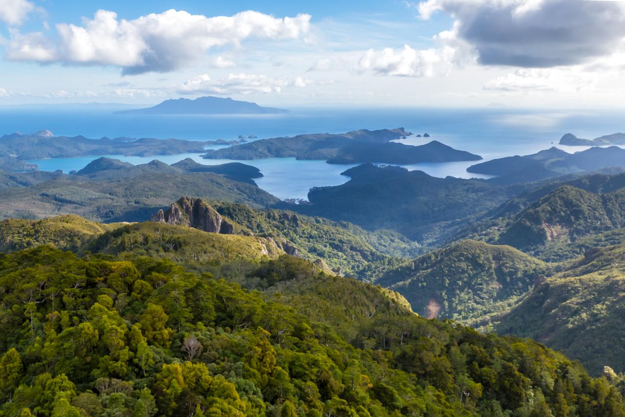 Neuseeland - Great Barrier Island - Mount Hobson