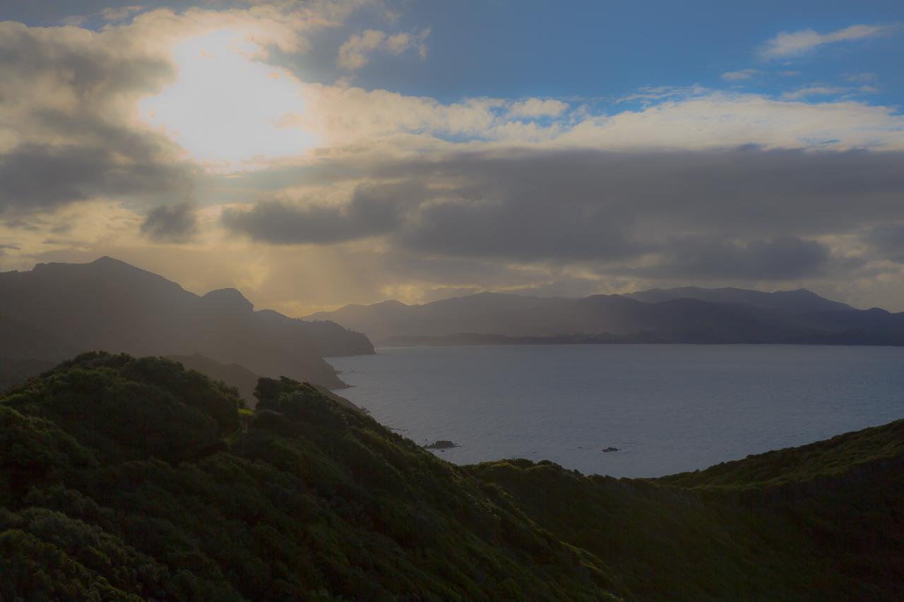 Neuseeland - Great Barrier Island - Harataonga Walkway