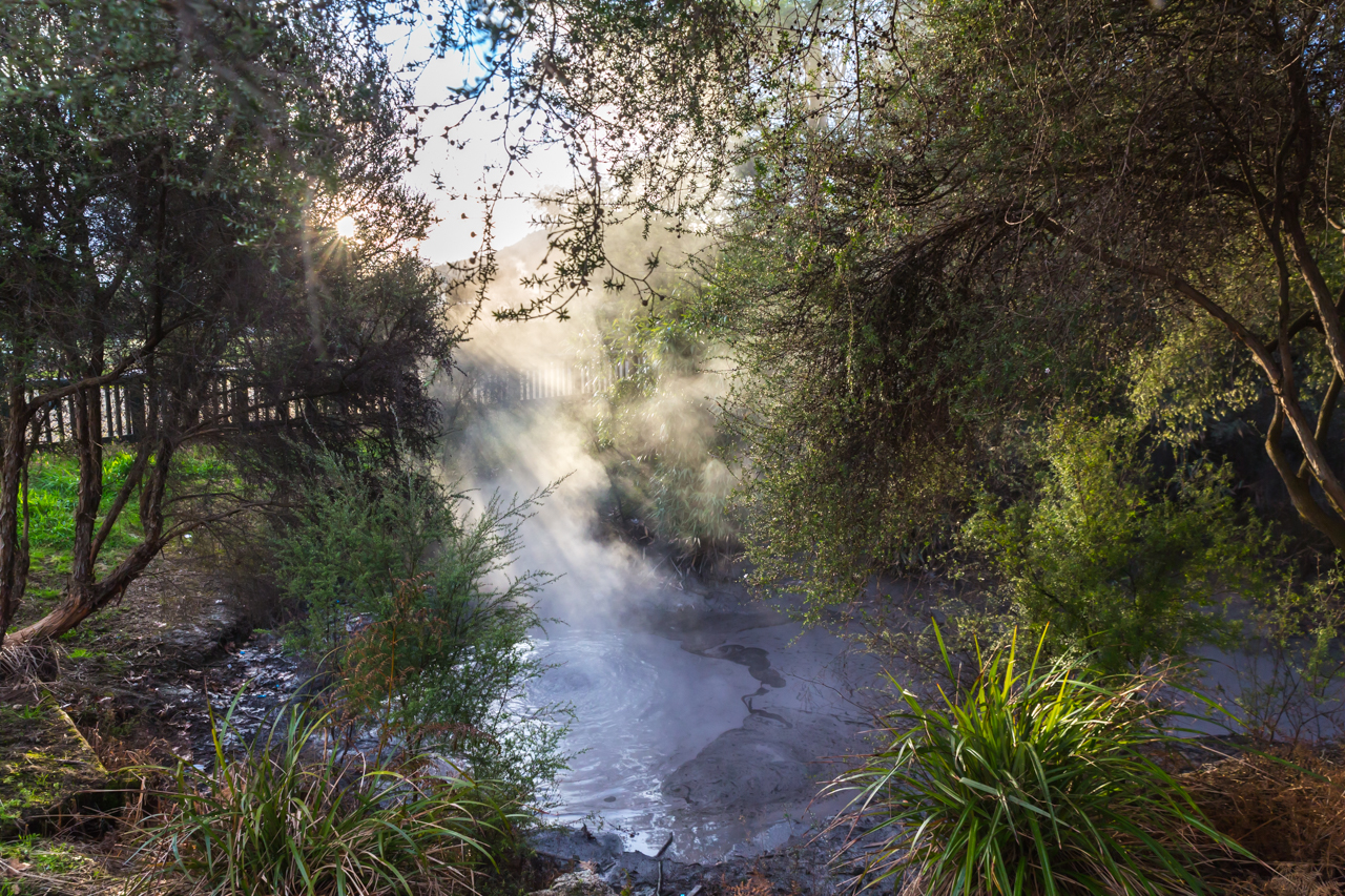 Neuseeland - Nordinsel - Rotorua - Kuirau Park