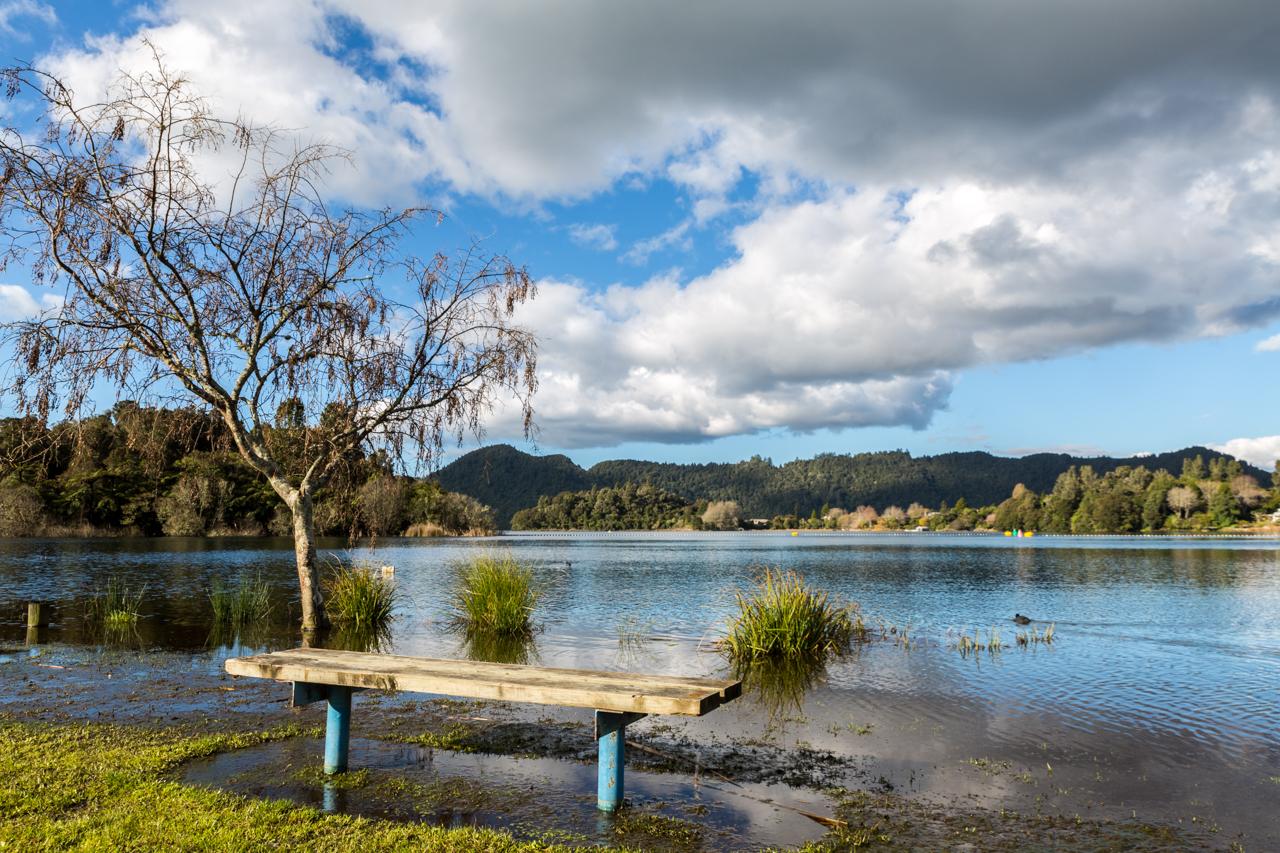 Neuseeland - Nordinsel - Rotorua - Lake Okareka
